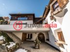 瑞士的房产,编号30778402