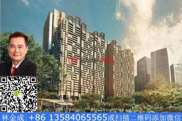 居外网在售新加坡2卧2卫新开发的房产总占地26200平方米SGD 2,902,240