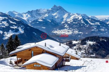 居外网在售瑞士Villars-sur-Ollon5卧5卫的房产总占地1500平方米CHF 3,300,000