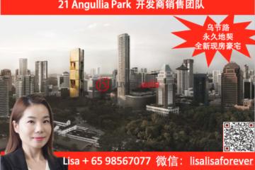 新加坡新加坡3卧3卫新房的房产