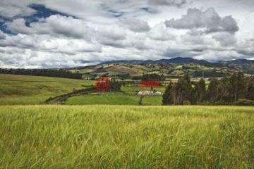 居外网在售厄瓜多尔San GabrielUSD 5,000,000总占地2184平方米的土地