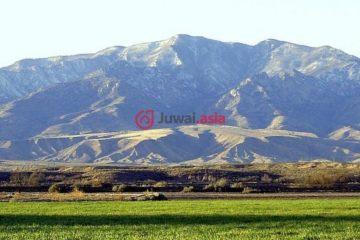居外网在售美国撒切尔USD 600,000总占地92940平方米的土地