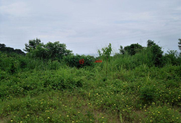 厄瓜多尔马纳维省Jama的土地,W 1st St,编号36286296