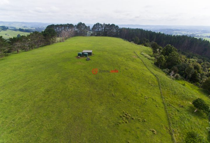 新西兰Auckland RegionMuriwai的房产,200 Valley Road Waitakere,编号36226373