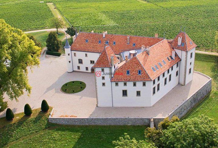 瑞士沃州阿拉芒的房产,2 Route de la Gare,编号36897754