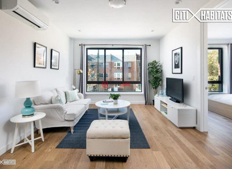 美国纽约州的新建房产,54 Monitor Street,编号35620496