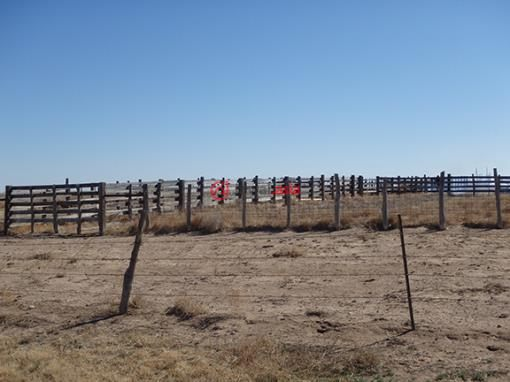 美国德克萨斯州Clayton的新建房产,Tbd Fm 296,编号26788389