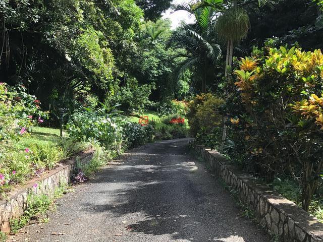 牙买加的房产,编号36731553